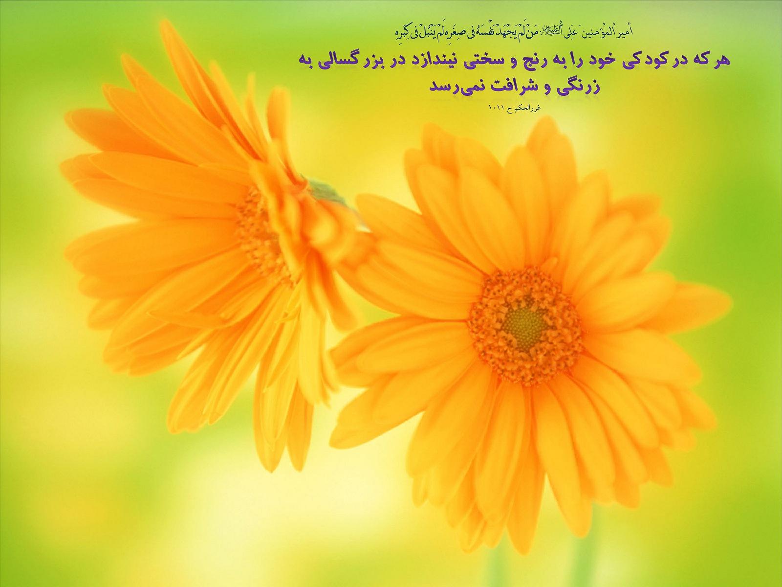 http://mhkh1972.gohardasht.com/uploaded/_659851AE-734C-4A90-A9E4-10DE185C0353_.jpg