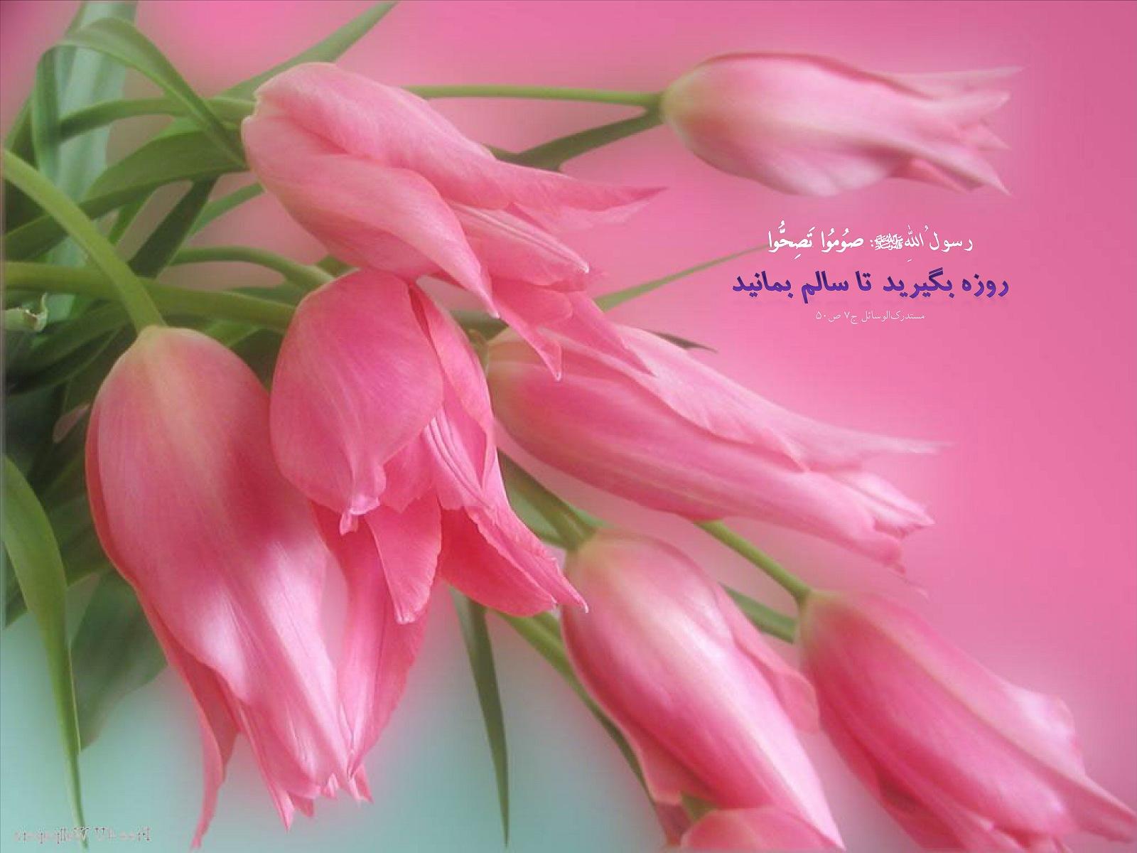 http://mhkh1972.gohardasht.com/uploaded/_F1C858A2-02D4-46EF-AF87-AC32F5331AEF_.jpg